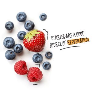 Berries are a good source of resveratrol