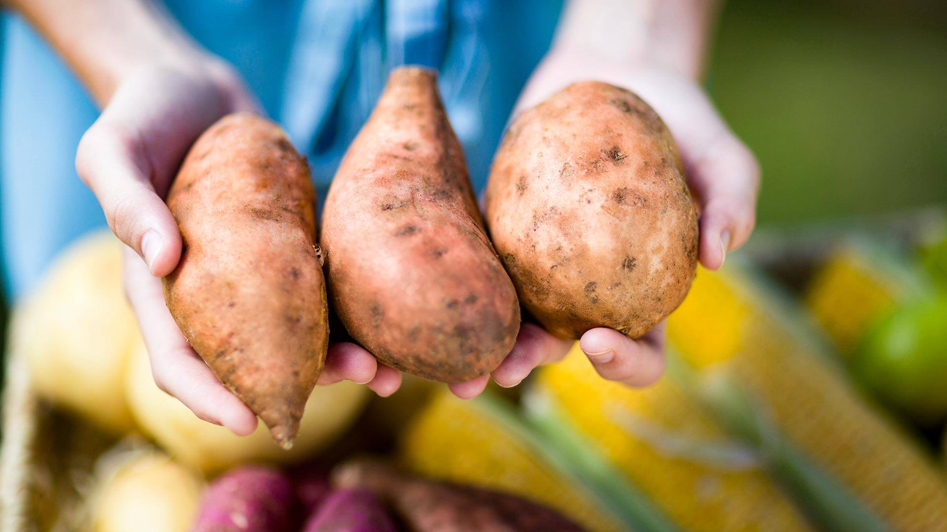 Healthy Foods That Look Like the Body Part They Help
