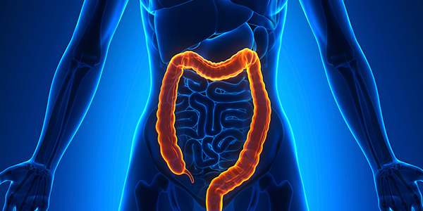 2015_04_02_GastrointestinalCancer_Colon_web_iS_000053419688