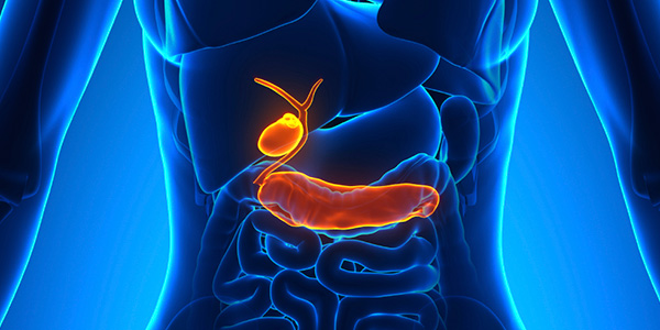 2015_04_02_GastrointestinalCancer_PancreasBileDuct_web_iS_000053419688