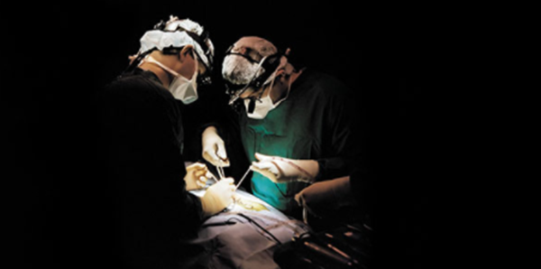 Two physicians performing general surgery.